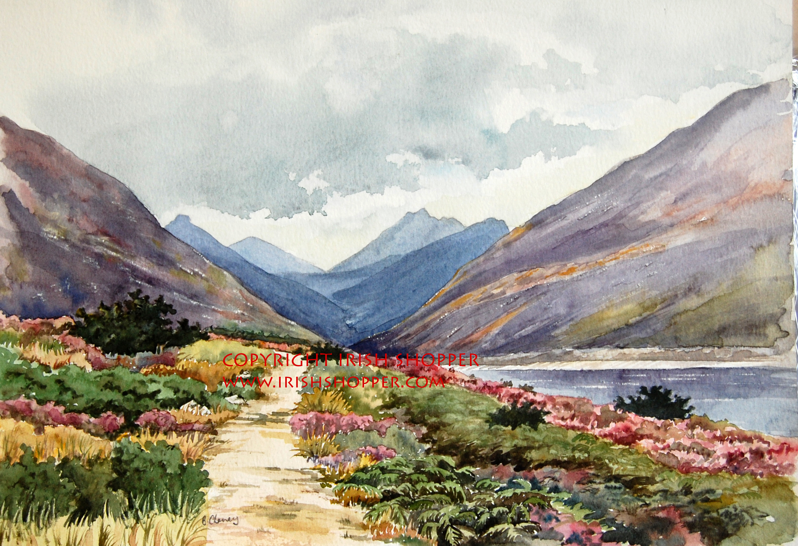 The Silent Valley - Small Print
